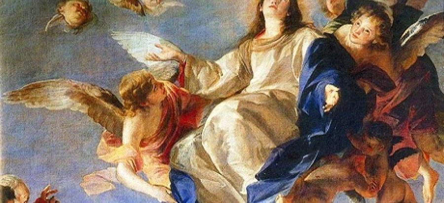 Feliz fiesta de la Inmaculada Concepción de la Santísima Virgen