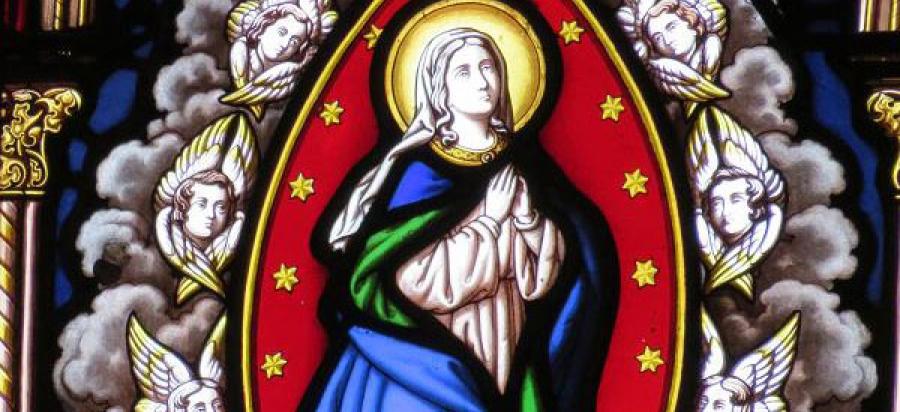 ¡Feliz y santa fiesta de la Asunción de la Santísima Virgen María!
